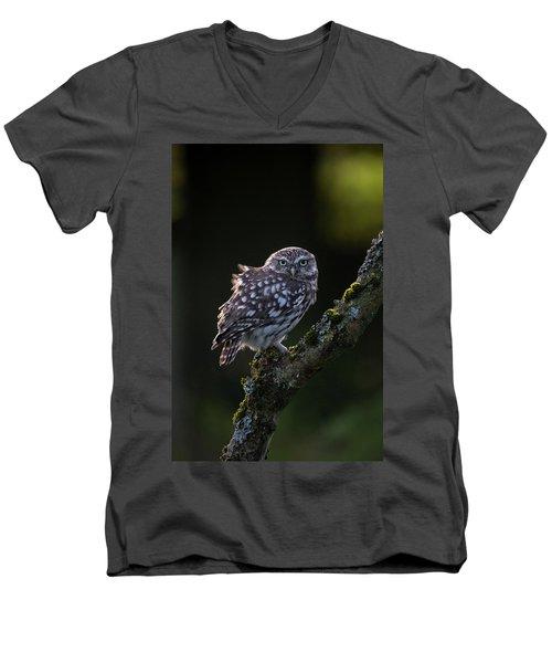 Backlit Little Owl Men's V-Neck T-Shirt