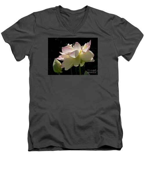 Backlit Lotus Blossom Men's V-Neck T-Shirt