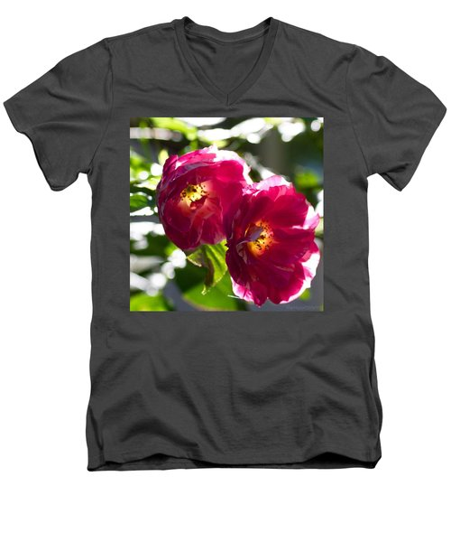 Backlit Roses In My Garden Men's V-Neck T-Shirt by Anna Porter