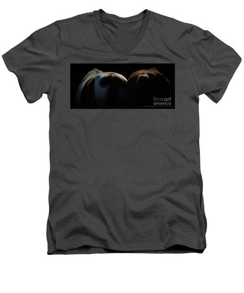 Backsides Men's V-Neck T-Shirt