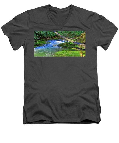 Backwoods Stream Men's V-Neck T-Shirt