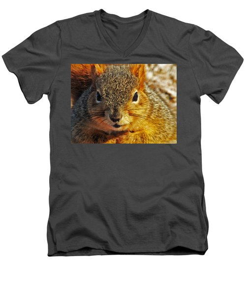 Backyard Squirrel Men's V-Neck T-Shirt
