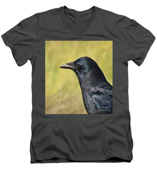 Corvus Corax Men's V-Neck T-Shirt by Michele Penner