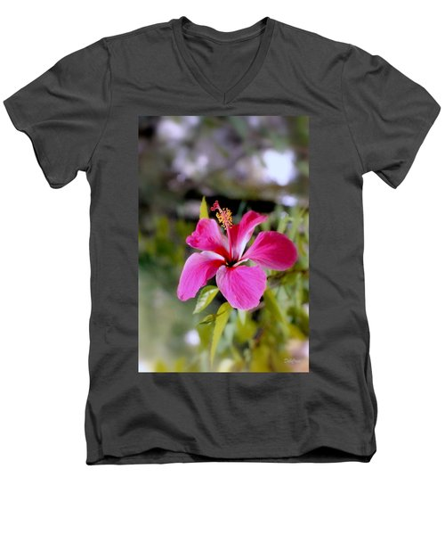 Bahamian Flower Men's V-Neck T-Shirt