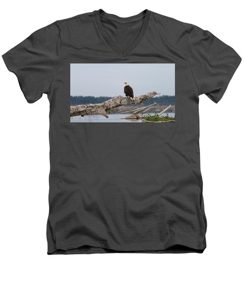 Bald Eagle #1 Men's V-Neck T-Shirt