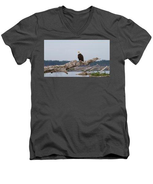 Bald Eagle #1 Men's V-Neck T-Shirt