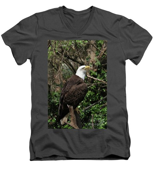 Bald Eagle #7 Men's V-Neck T-Shirt