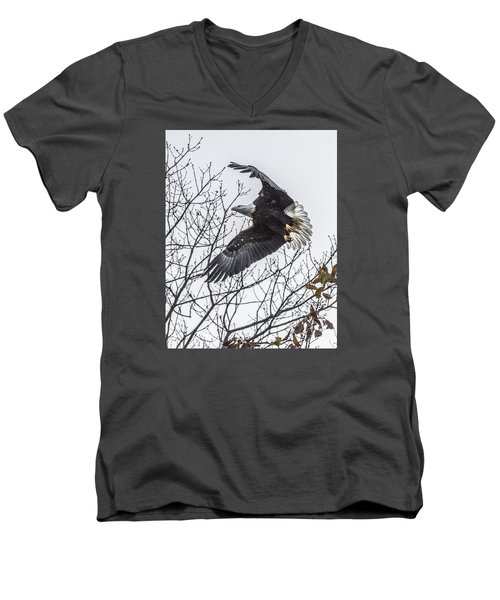 Bald Eagle Flying Men's V-Neck T-Shirt