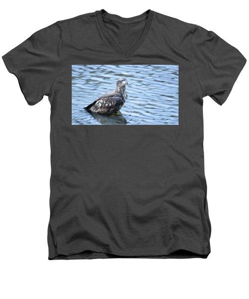 Bald Eagle Juvenile Men's V-Neck T-Shirt