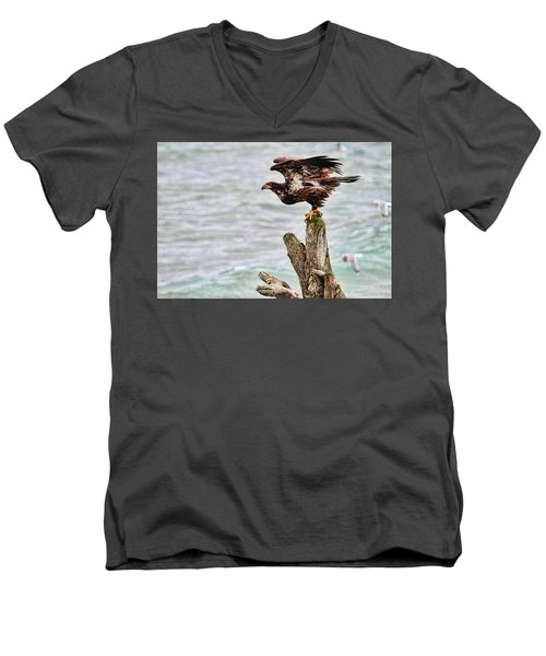 Bald Eagle On Driftwood At The Beach Men's V-Neck T-Shirt by Peggy Collins