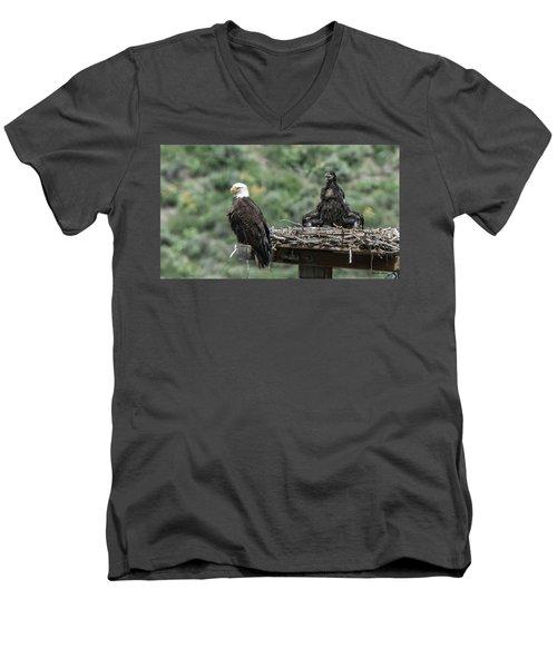 Bald Eaglet Cooling Off On A Hot Spring Day Men's V-Neck T-Shirt