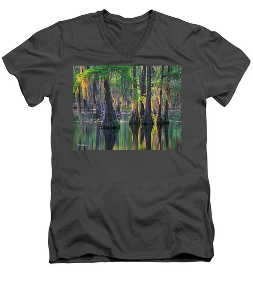 Baldcypress Trees, Louisiana Men's V-Neck T-Shirt