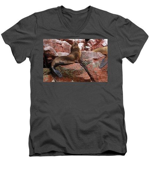 Men's V-Neck T-Shirt featuring the photograph Ballestas Island Fur Seals by Aidan Moran