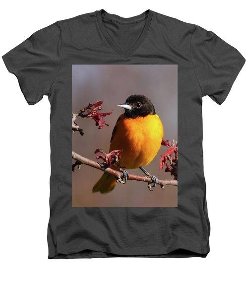 Baltimore Oriole II Men's V-Neck T-Shirt