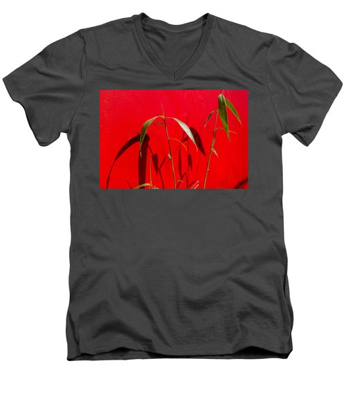 Bamboo Against Red Wall Men's V-Neck T-Shirt