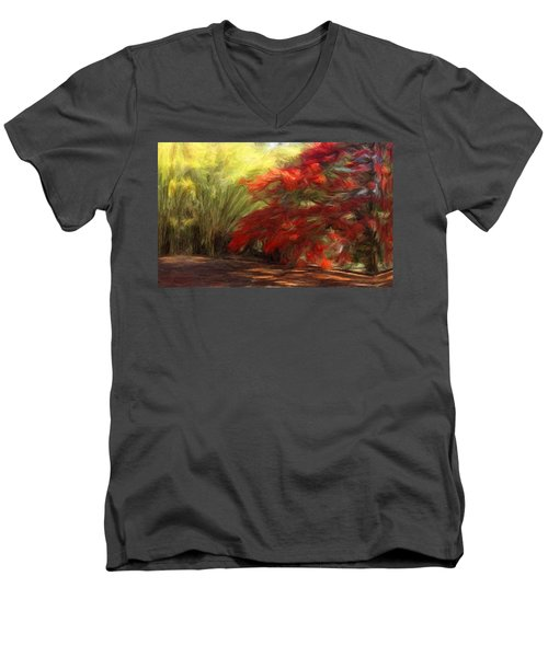 Bamboo And The Flamboyant Men's V-Neck T-Shirt