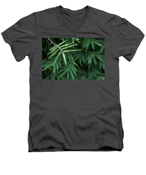 Men's V-Neck T-Shirt featuring the photograph Bamboo Leaves Background by Jingjits Photography