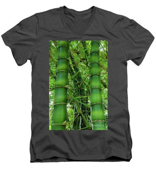 Bamboo Men's V-Neck T-Shirt by Loriannah Hespe