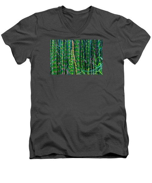 Bamboo Shoots Men's V-Neck T-Shirt