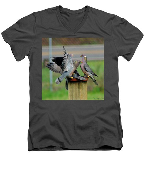 Band-tailed Pigeons #1 Men's V-Neck T-Shirt