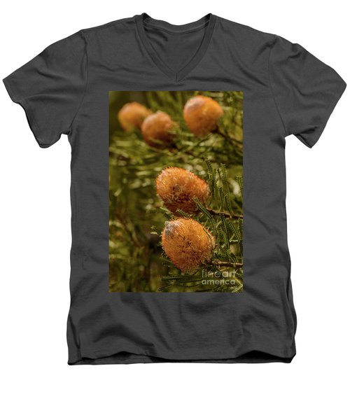 Men's V-Neck T-Shirt featuring the photograph Banksia by Werner Padarin