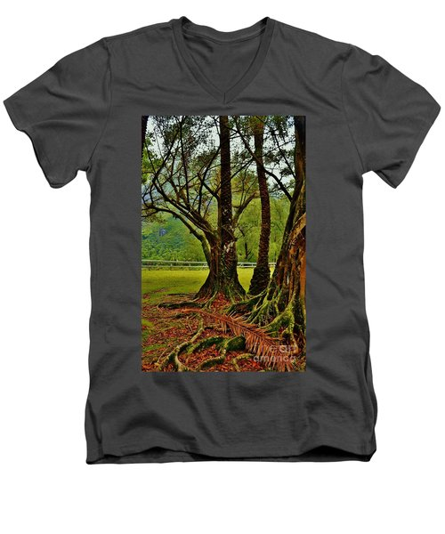 Banyan Tree And Date Palm Men's V-Neck T-Shirt