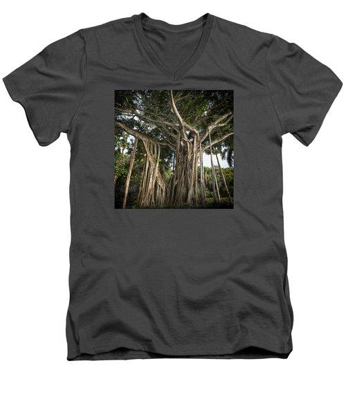 Banyan Tree At Bonnet House Men's V-Neck T-Shirt