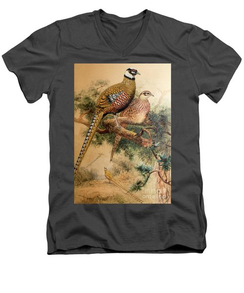 Bar-tailed Pheasant Men's V-Neck T-Shirt by Joseph Wolf