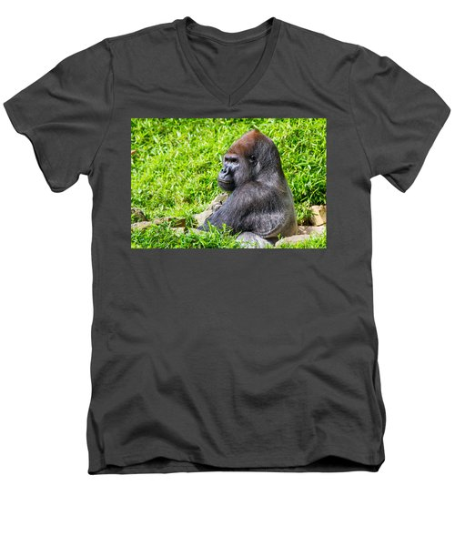 Baraka - Western Lowalnd Silverback Gorilla Men's V-Neck T-Shirt