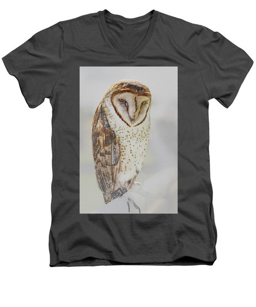 Barn Owl Men's V-Neck T-Shirt