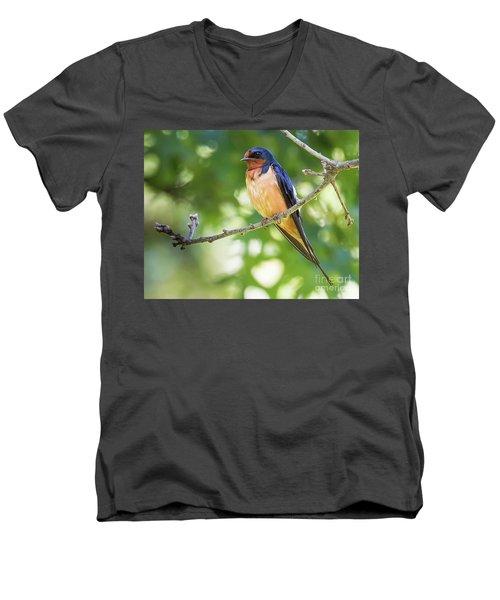 Barn Swallow  Men's V-Neck T-Shirt by Ricky L Jones