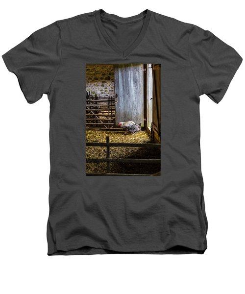 Barnyard Friends Men's V-Neck T-Shirt