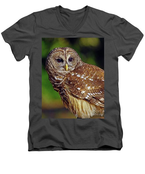 Men's V-Neck T-Shirt featuring the photograph Barred Owl by Larry Nieland