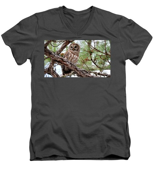 Barred Owl On Tree Branch Men's V-Neck T-Shirt