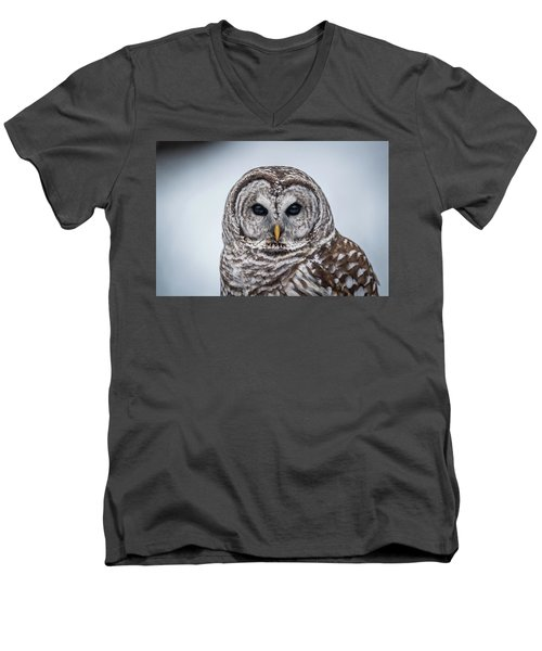 Men's V-Neck T-Shirt featuring the photograph Barred Owl by Paul Freidlund