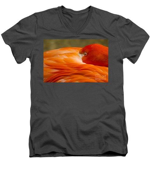 Bashful Flamingo Men's V-Neck T-Shirt