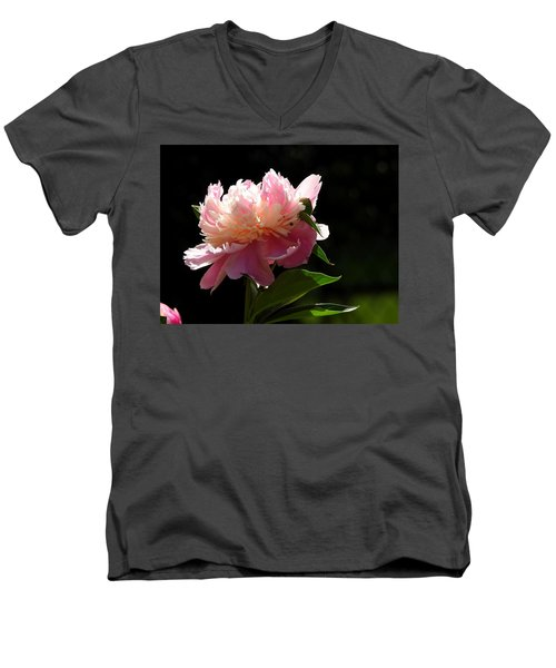 Men's V-Neck T-Shirt featuring the photograph Basking In The Sun by Betty-Anne McDonald