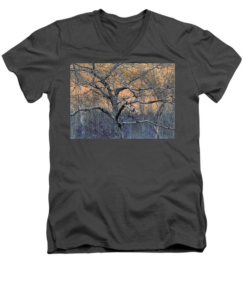 Bb's Tree 2 Men's V-Neck T-Shirt