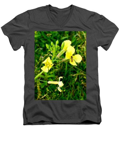 Be My Honey Men's V-Neck T-Shirt