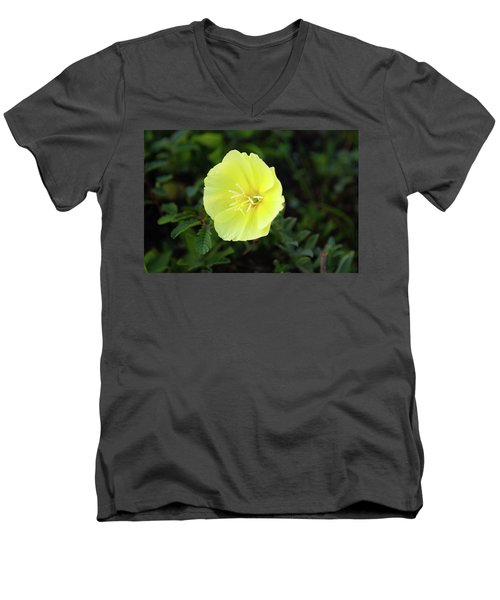 Beach Flower Men's V-Neck T-Shirt