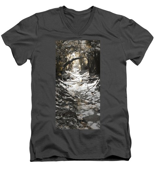 Beach Park Storm Drain Men's V-Neck T-Shirt