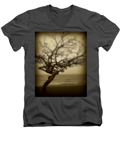 Beach Tree Men's V-Neck T-Shirt by Perry Webster
