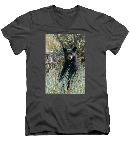 Men's V-Neck T-Shirt featuring the photograph Bear Cub At Waterton Canyon by Stephen  Johnson