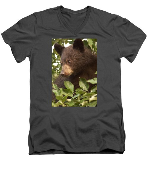Bear Cub In Apple Tree1 Men's V-Neck T-Shirt