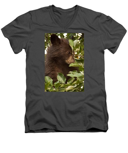 Bear Cub In Apple Tree3 Men's V-Neck T-Shirt by Loni Collins