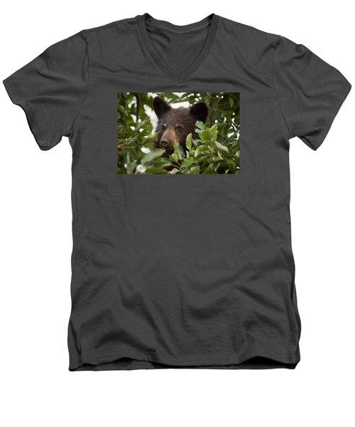 Bear Cub In Apple Tree6 Men's V-Neck T-Shirt by Loni Collins