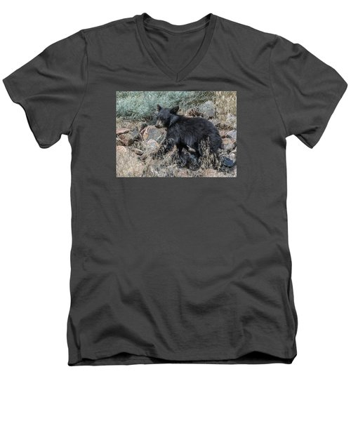 Men's V-Neck T-Shirt featuring the photograph Bear Cub Walking by Stephen  Johnson