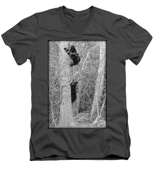 Bear Cubs Men's V-Neck T-Shirt