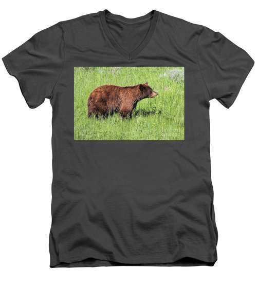 Bear Eating Daisies Men's V-Neck T-Shirt