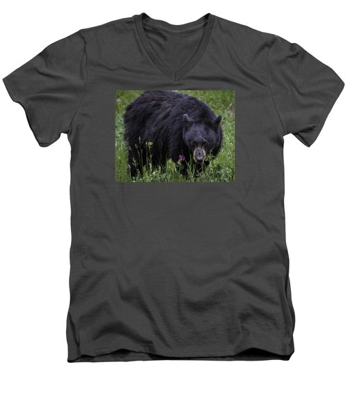 Bear Gaze Men's V-Neck T-Shirt by Elizabeth Eldridge